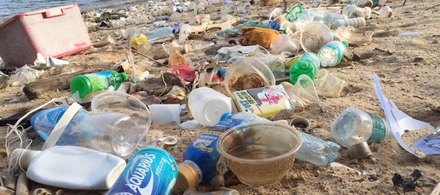 Viral 'Trashtag Challenge' encourages people to clean up litter
