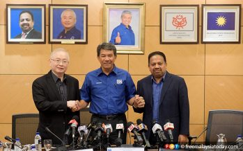 MCA, MIC remain component parties of BN