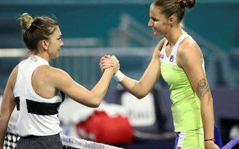 Pliskova roars past Halep into Miami WTA final