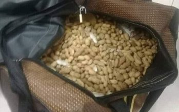Man tries smuggling drugs in peanut shells at Pakistan airport.