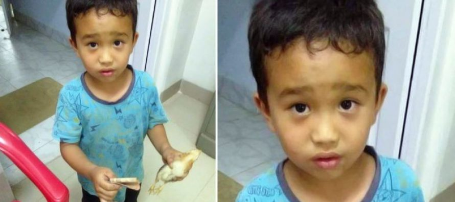 School rewards Mizoram kid who took injured chicken to hospital