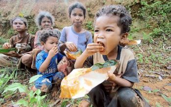 Orang Asli community in Batang Padang to get treated water by August