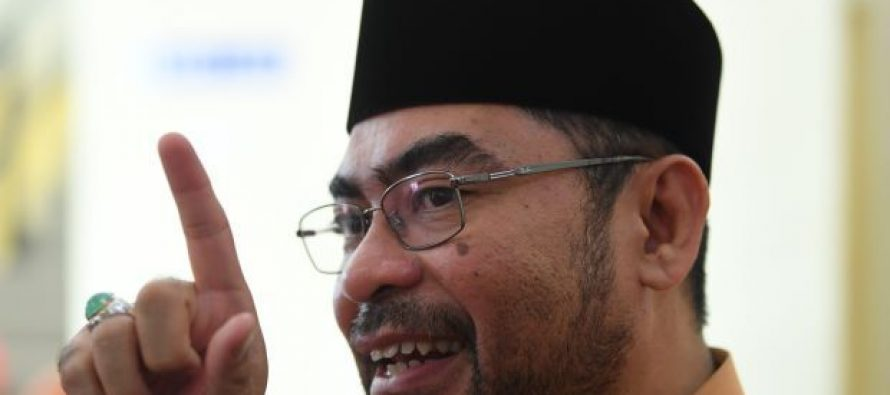 Mujahid: TH will pay higher dividends in future