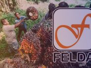 'Felda settlers won't lose their land rights'