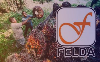 'Felda settlers won't lose their land rights'