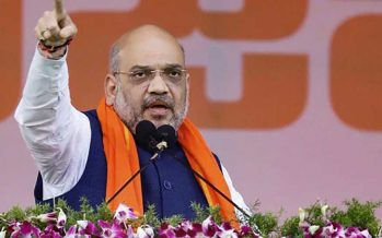 BJP chief Shah touted as India's next finance minister