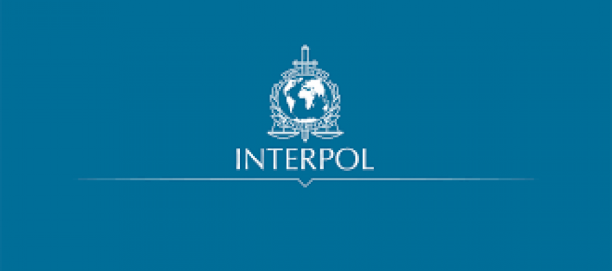 Interpol bust international paedophile ring, save 50 children