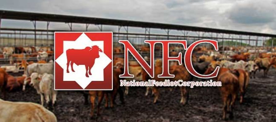 New investor confident of NFCorp