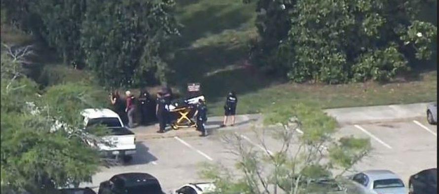 12 including gunman dead in shooting spree