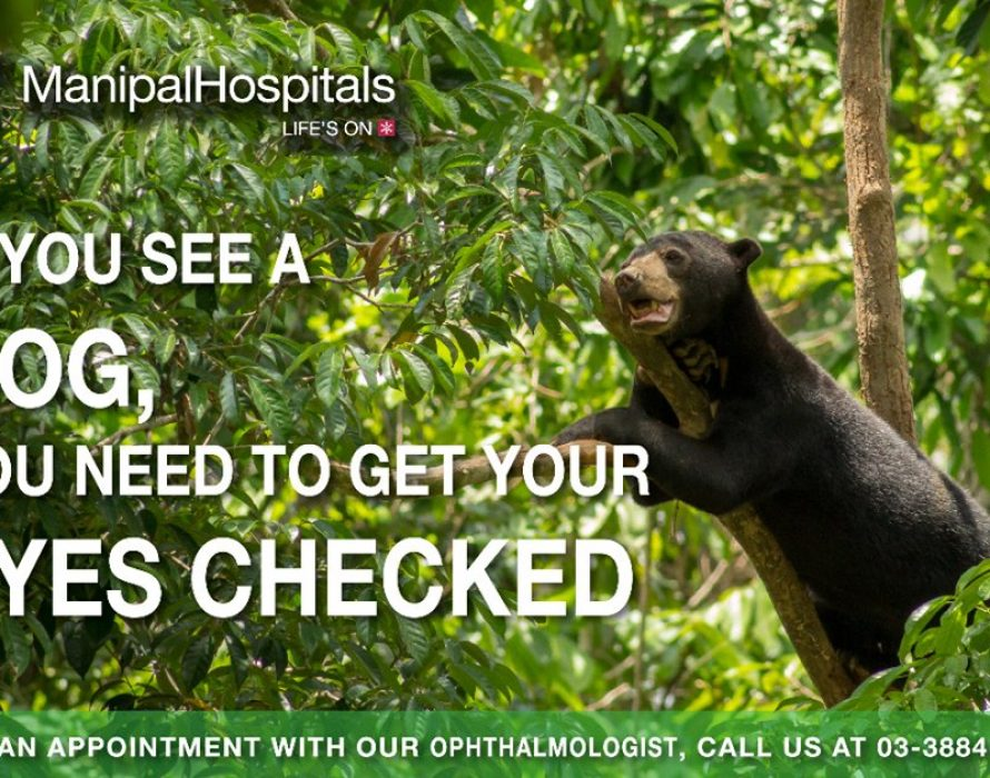 Sun bear cub episode in hospital's eye check up ad
