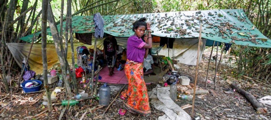 Health Ministry to locate Orang Asli graves in Kampung Kuala Koh