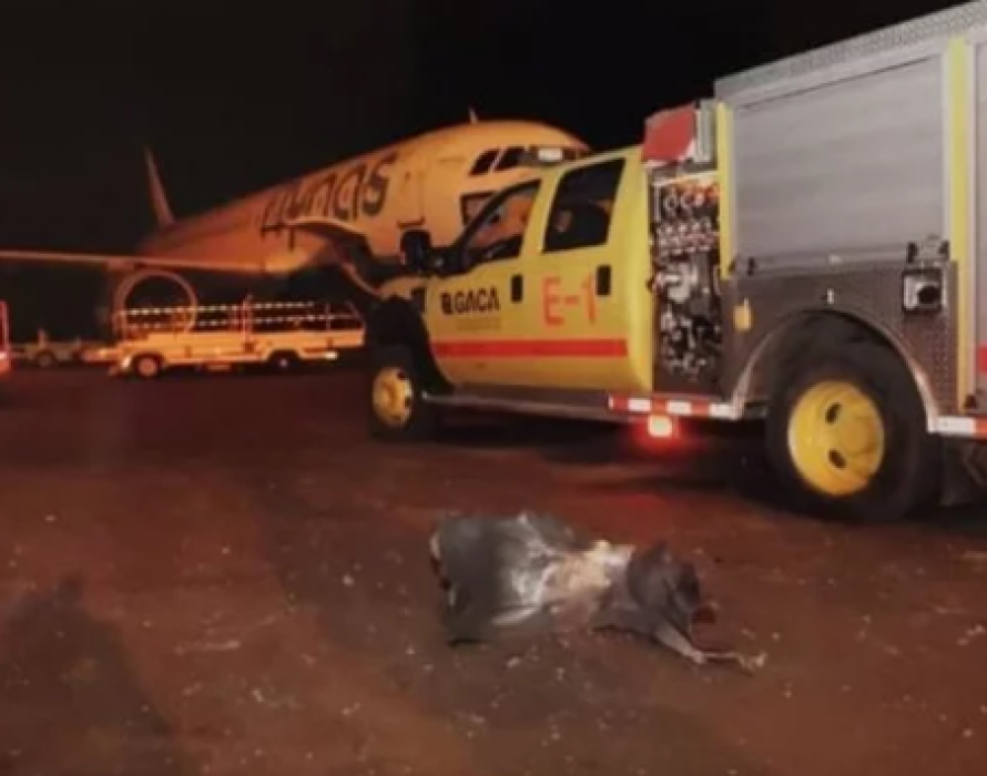 Malaysia condemns attack on Saudi airport