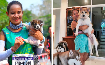 Puppy rescued by Thai marathoner now a happy 18kg doggo