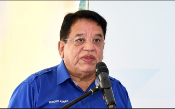Ku Nan said RM2 mil meant as political donation