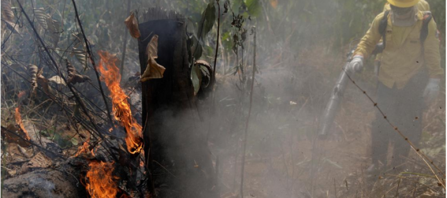 Amazon fires: Farmers are poor, not villains