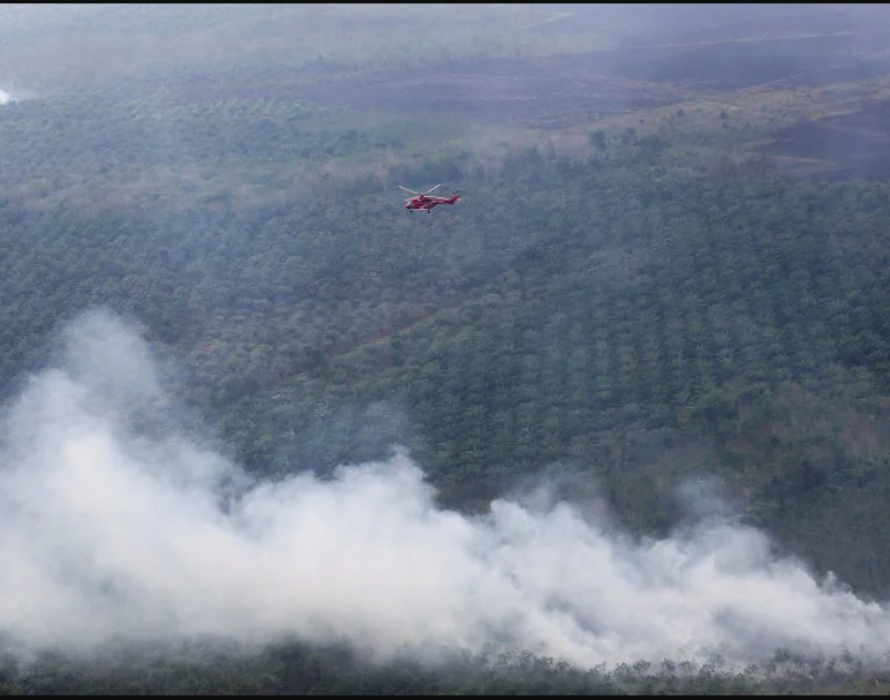 Haze: Indonesian activists blast govt for failing to contain forest fires