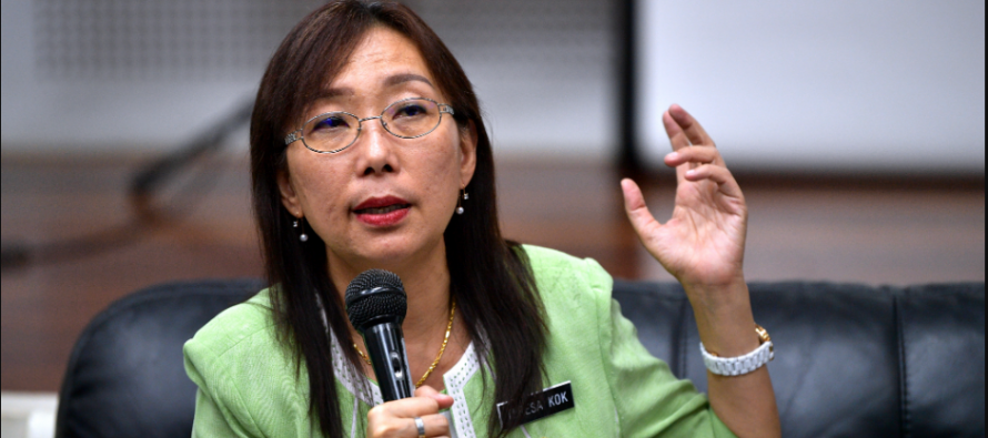 Kok: Unfair to blame oil palm industry for haze