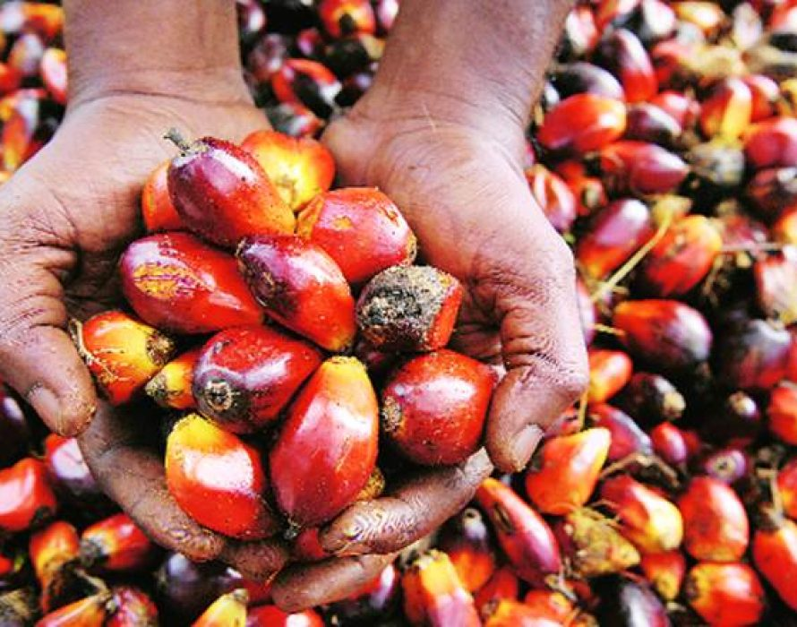 Azmin: Trade spat with India over palm oil will not be prolonged