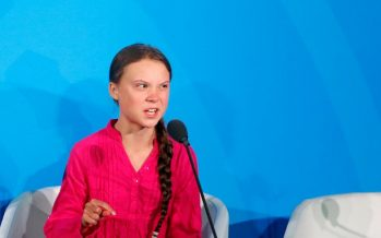 Thunberg declines environmental award