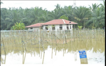 Number of flood victims in Perak remain at 308
