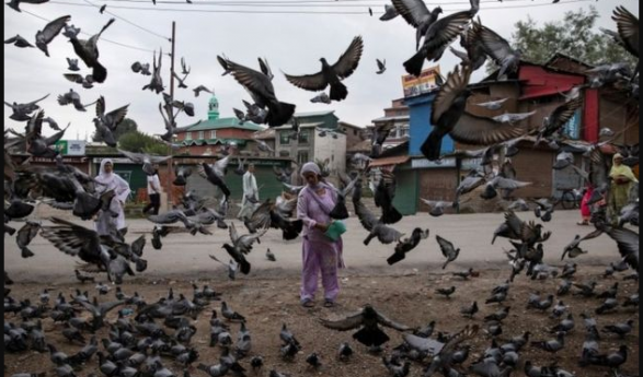 India restores postpaid cellphone services in Kashmir