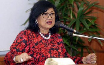 """Rafidah: Malaysia can achieve developed status in its """"own mould'"""