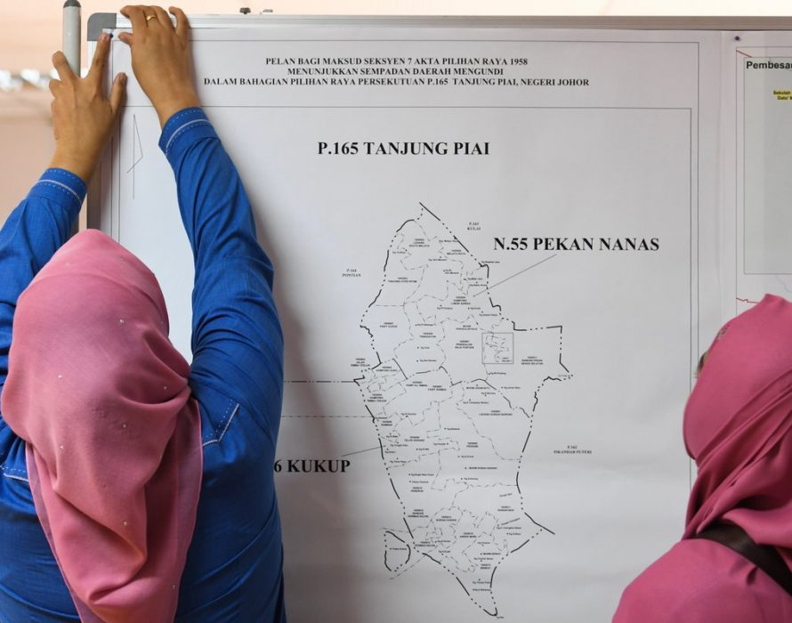 Pekan Nanas: Focal point of campaign for Tanjung Piai by-election