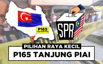 Tanjung Piai by-election: Tough contenders
