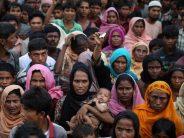Myanmar agrees to start taking back Rohingya this year