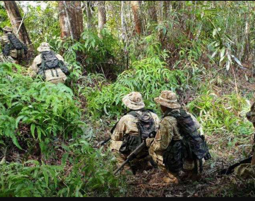 Tiger Platoon: The next step in combating poaching