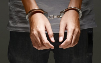 Woman nabbed over alleged abuse of stepdaughter