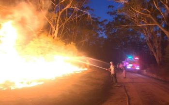 Three people feared dead in Australian bushfires: authorities