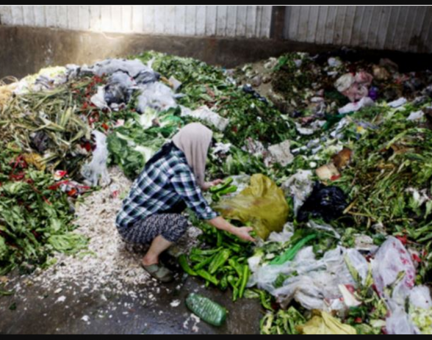 PSM: Declare war on unbridled food wastage, not a dead man's cremains
