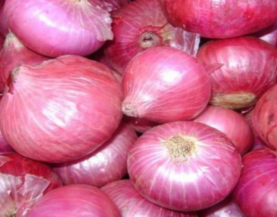 Prices of red chili, onions under control – KPDNHEP