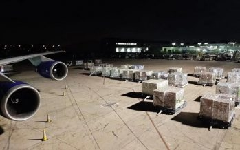 SF Express Offers Customized Perishable Logistics Service from North and South America to China