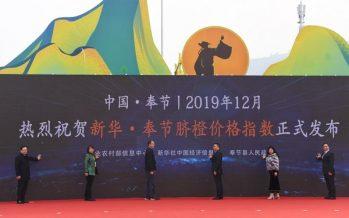 Xinhua Silk Road: Xinhua-Fengjie Navel Orange Price Index released in SW China's Chongqing