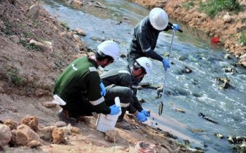 A stream in Mantin believed to be contaminated with chemical substance