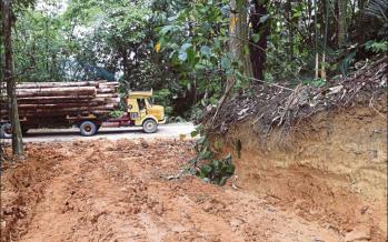 Damaged roads leave Gua Musang Orang Asli stranded