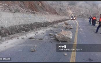 Magnitude 4.5 quake hits near Iran nuclear power plant: USGS
