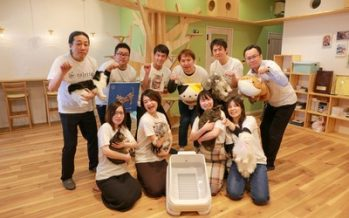 Japanese Startup Raises $4 Million and Aims to Bring Smart Litter Box to U.S.
