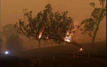Australia receives a bittersweet bushfires reprieve with floods, cyclone