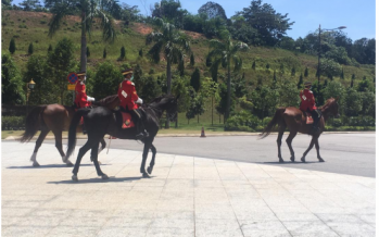 Istana Negara: Palace guards and their horses undeterred by hot weather, stress