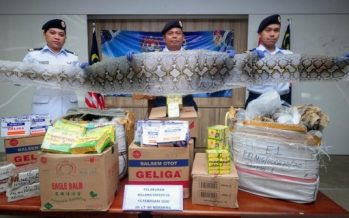 Attempt to smuggle snake, monitor lizard skins foiled