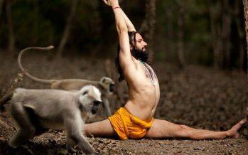 Yoga helps beat the fear of coronavirus