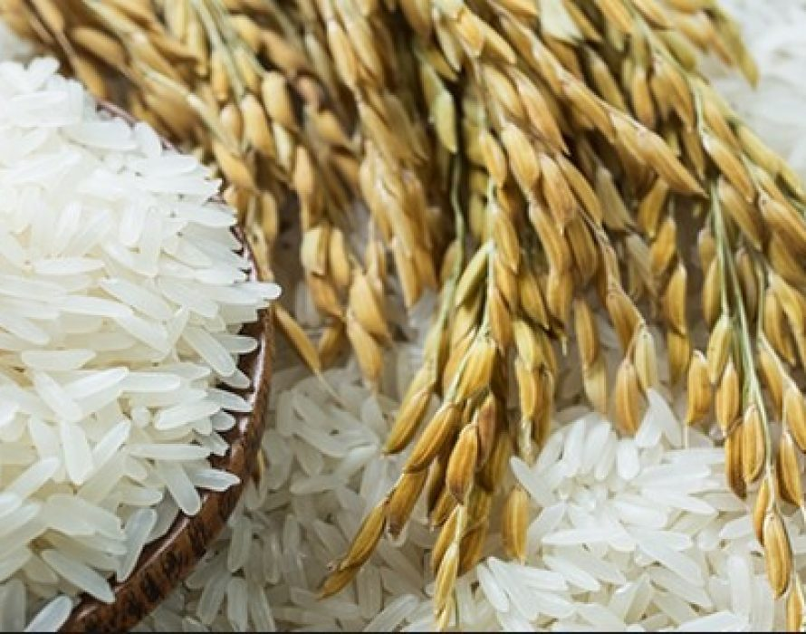 COVID-19: NGOs urged govt. to monitor price, distribution, stock of rice