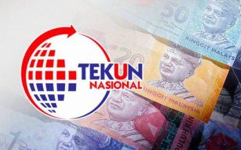 Entrepreneurs should borrow from Tekun National, not Ah Longs :Wan Junaidi