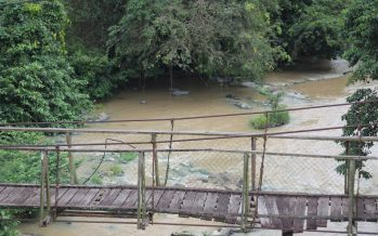 Flash floods in Felda Palong, nine families affected