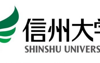 Shinshu University and Toshiba Develop Tumor-Tropic Liposome Technology that Carries Therapeutic Genes into Cancer Cells