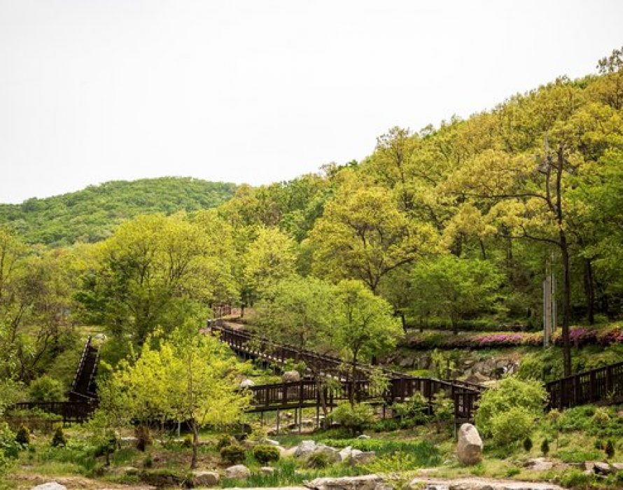 The city government of Incheon introduces nature tourist spots in the city