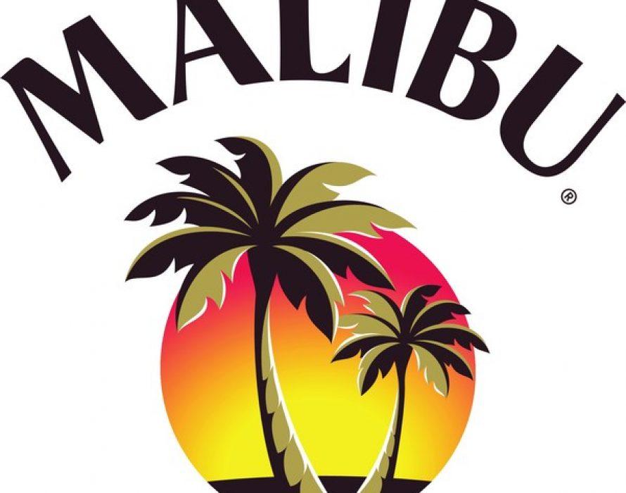 Malibu & DJ Dillon Francis Remix an Internet Sensation into a Summer Anthem You Can't Ignore